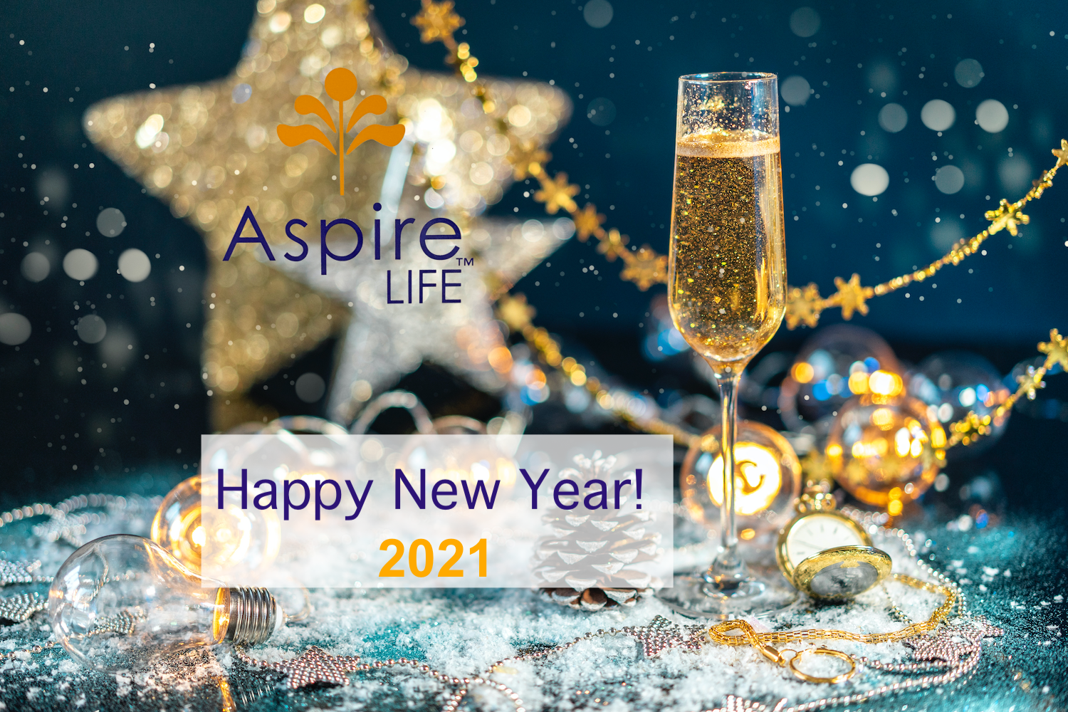 Wine Glass and AspireLIFE Logo with Stars